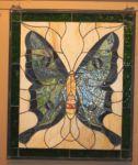 фото бабочки в витраже