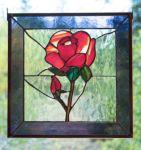 фото роза тиффани